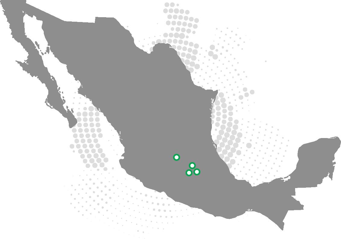 mapa gonoval
